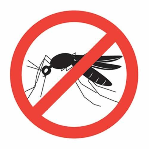 Chống muỗi cuộc chiến bảo vệ sức khỏe cộng đồng